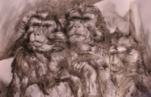 art-borescences_140305_ les_singes_vendre_art_internet